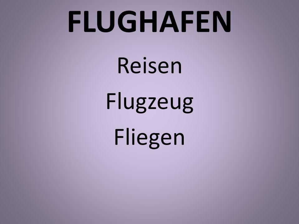 Reisen Flugzeug Fliegen