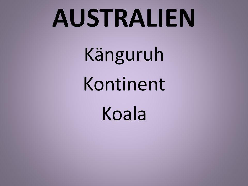 Känguruh Kontinent Koala
