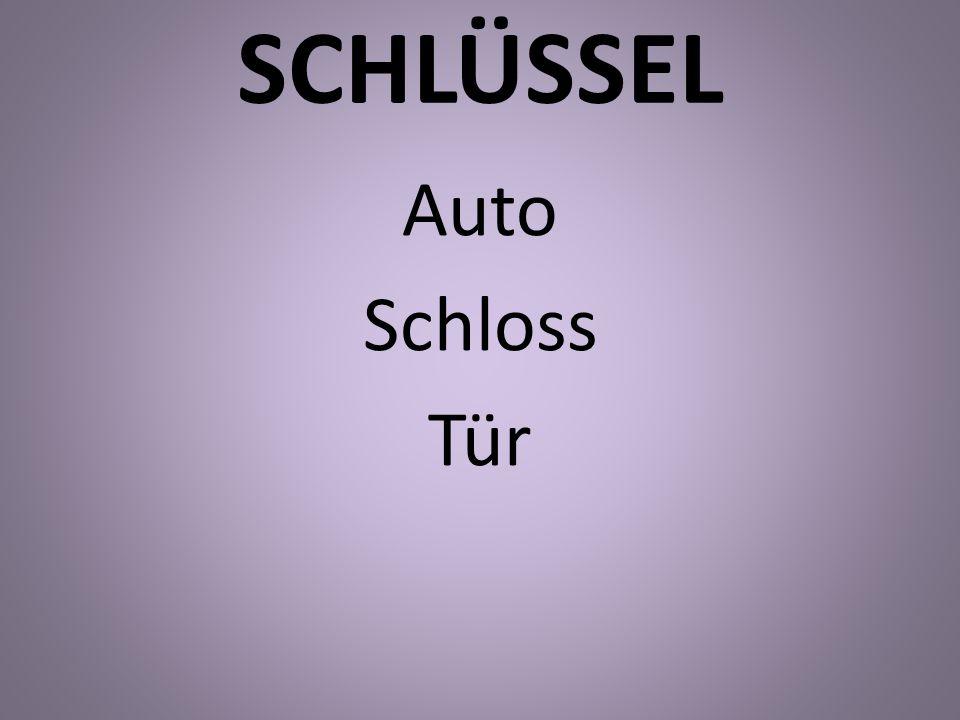 SCHLÜSSEL Auto Schloss Tür
