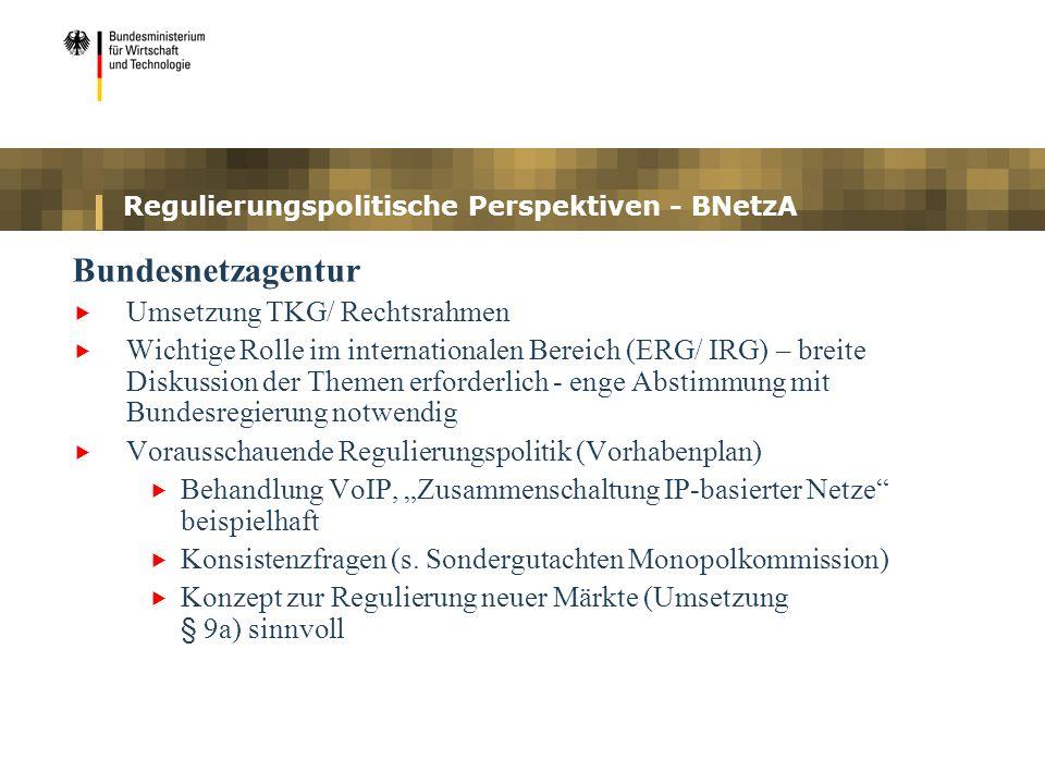 Regulierungspolitische Perspektiven - BNetzA