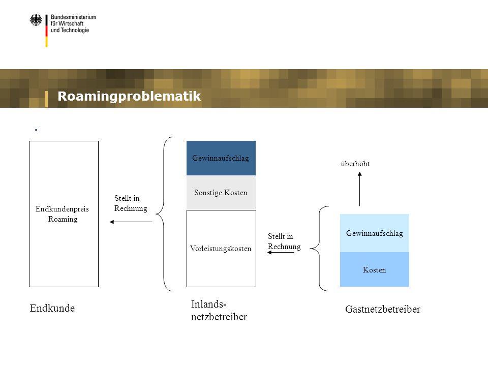 . Roamingproblematik Inlands- netzbetreiber Endkunde Gastnetzbetreiber
