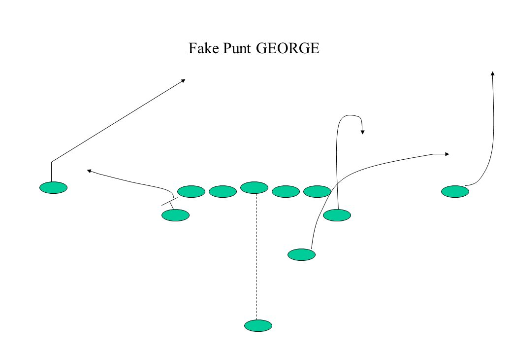 Fake Punt GEORGE