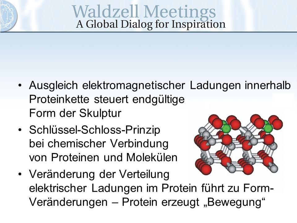 Ausgleich elektromagnetischer Ladungen innerhalb Proteinkette steuert endgültige Form der Skulptur