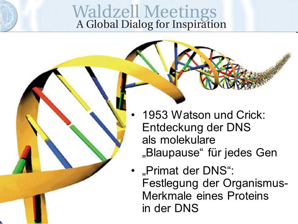"""1953 Watson und Crick: Entdeckung der DNS als molekulare """"Blaupause für jedes Gen"""