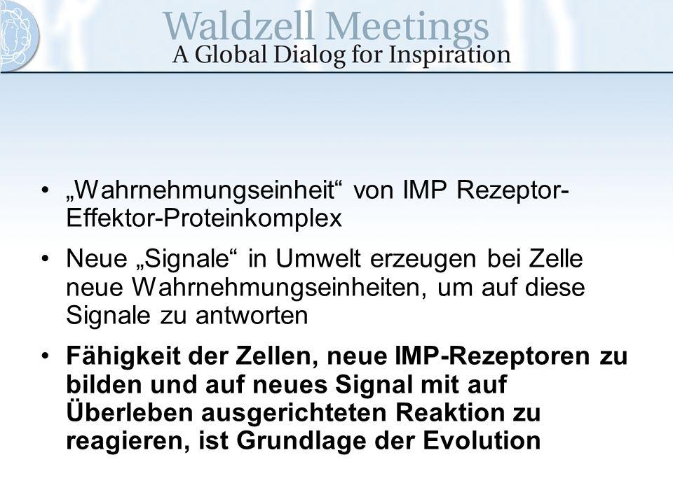 """""""Wahrnehmungseinheit von IMP Rezeptor-Effektor-Proteinkomplex"""