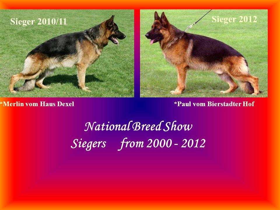 *Paul vom Bierstadter Hof National Breed Show Siegers from 2000 - 2012