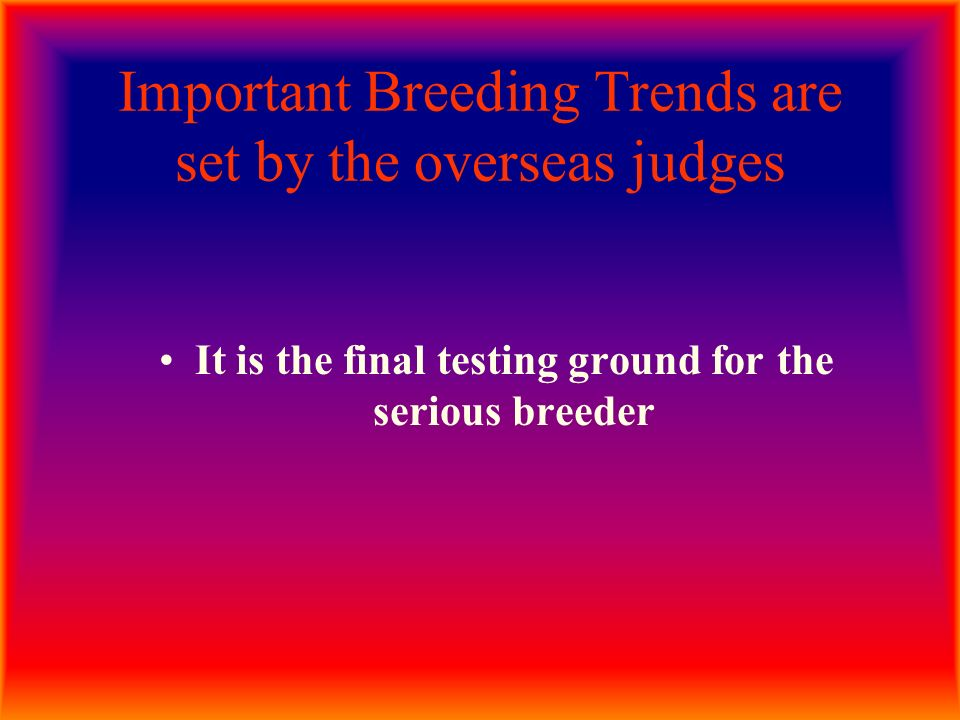 Important Breeding Trends are set by the overseas judges