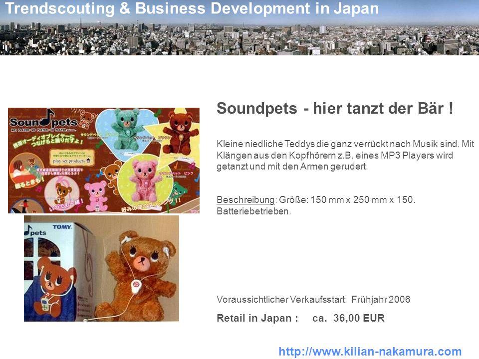 Soundpets - hier tanzt der Bär !