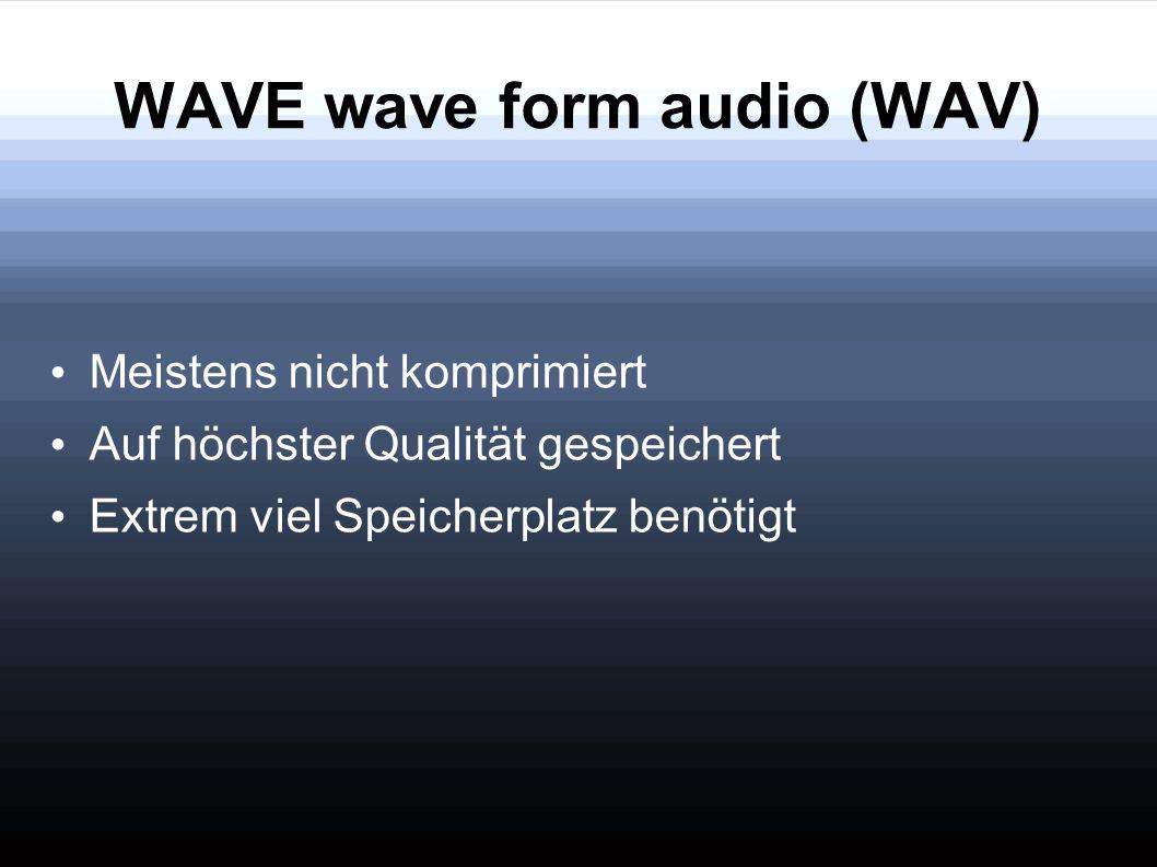 WAVE wave form audio (WAV)