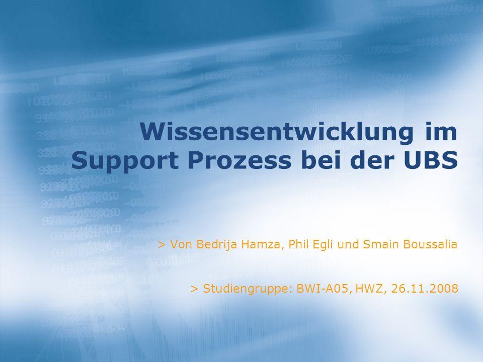 Wissensentwicklung im Support Prozess bei der UBS