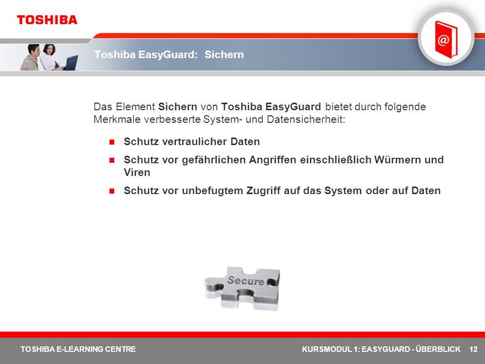 Toshiba EasyGuard: Sichern