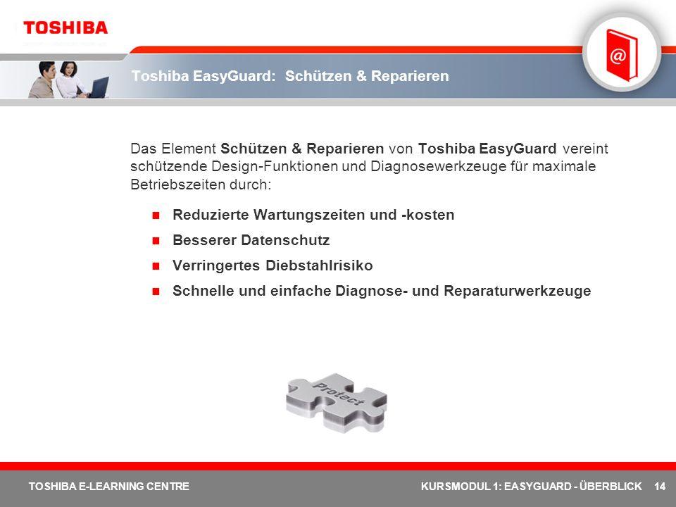Toshiba EasyGuard: Schützen & Reparieren