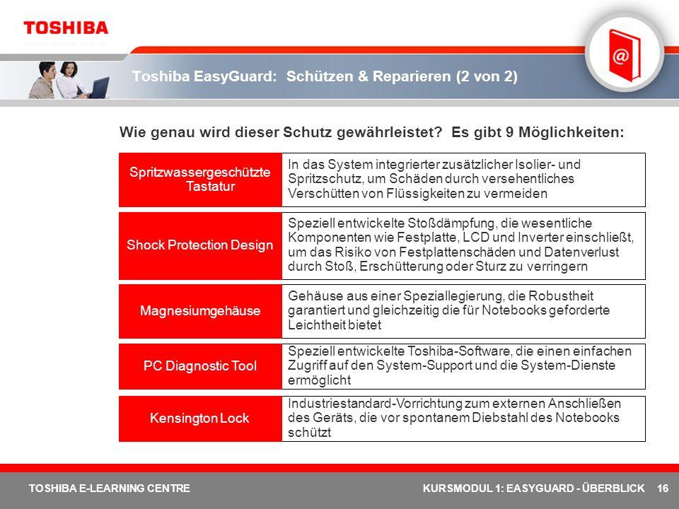 Toshiba EasyGuard: Schützen & Reparieren (2 von 2)