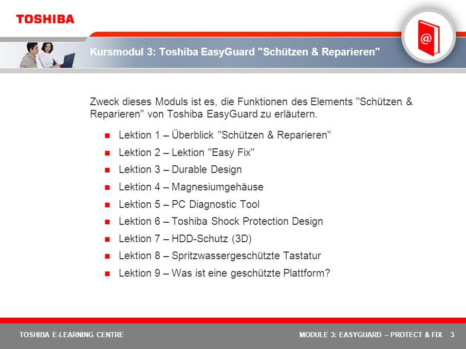 Kursmodul 3: Toshiba EasyGuard Schützen & Reparieren