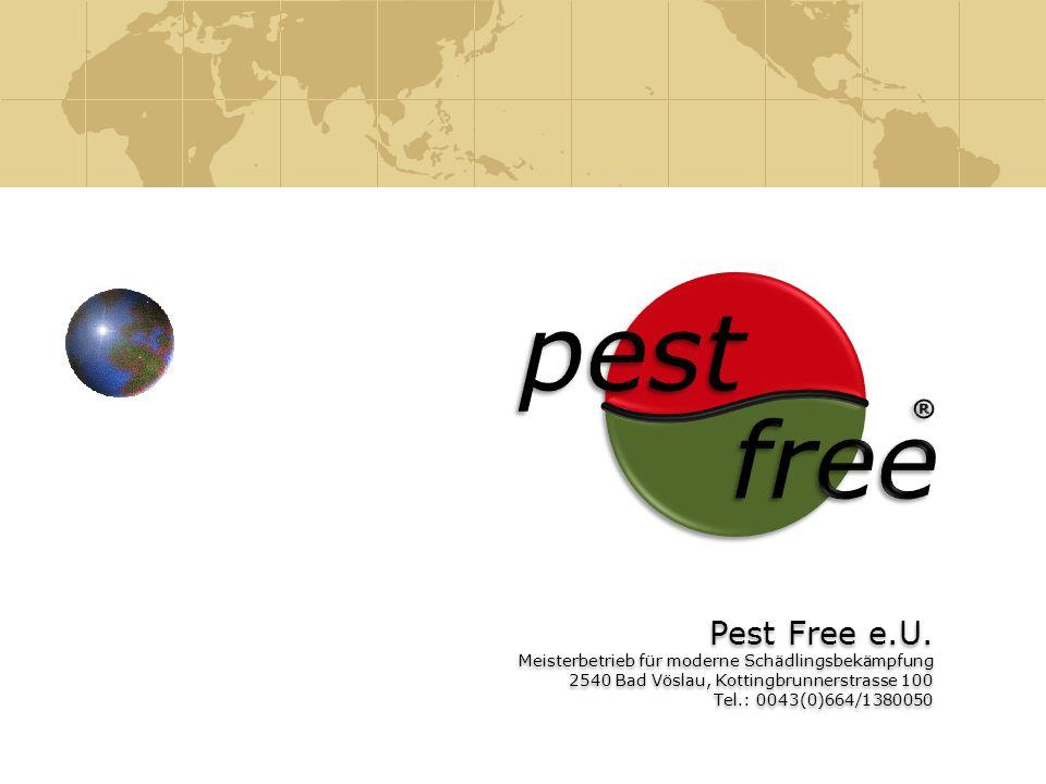 pestfree. ® Pest Free e.U. Meisterbetrieb für moderne Schädlingsbekämpfung. 2540 Bad Vöslau, Kottingbrunnerstrasse 100.