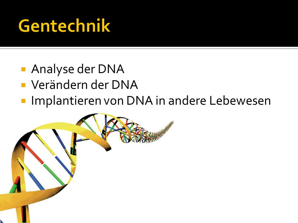 Gentechnik Analyse der DNA Verändern der DNA