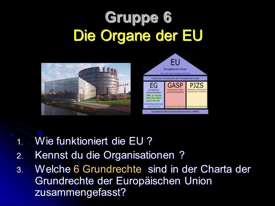 Gruppe 6 Die Organe der EU