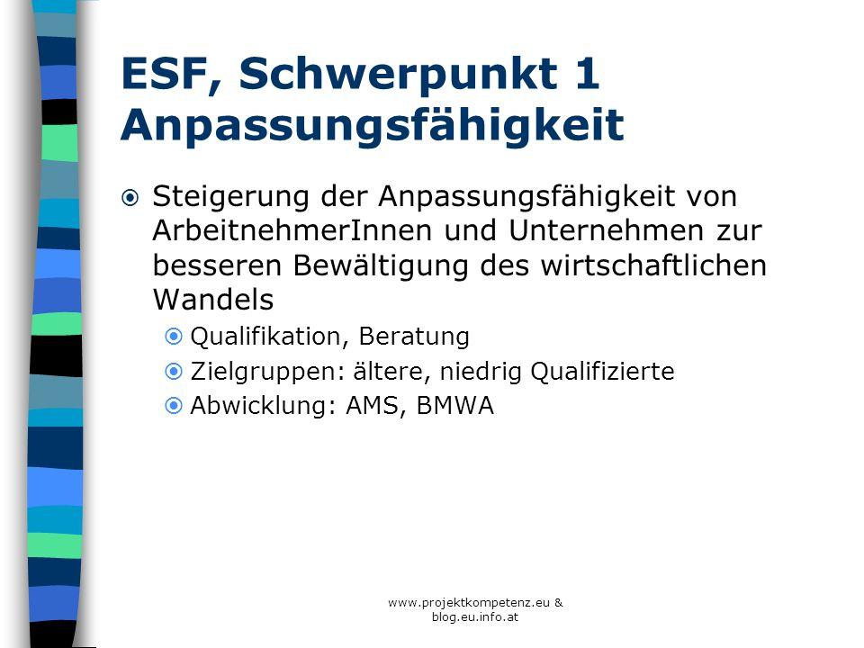 ESF, Schwerpunkt 1 Anpassungsfähigkeit