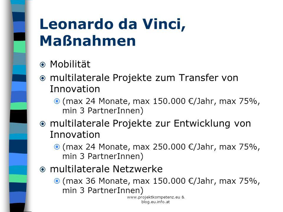 Leonardo da Vinci, Maßnahmen