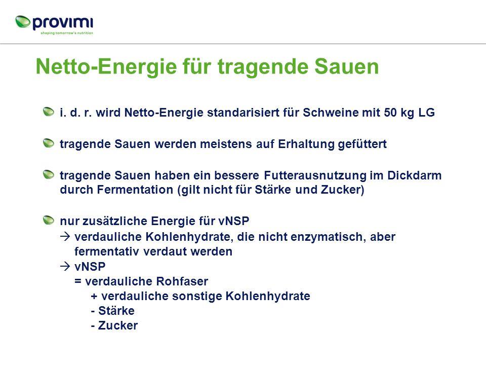 Netto-Energie für tragende Sauen