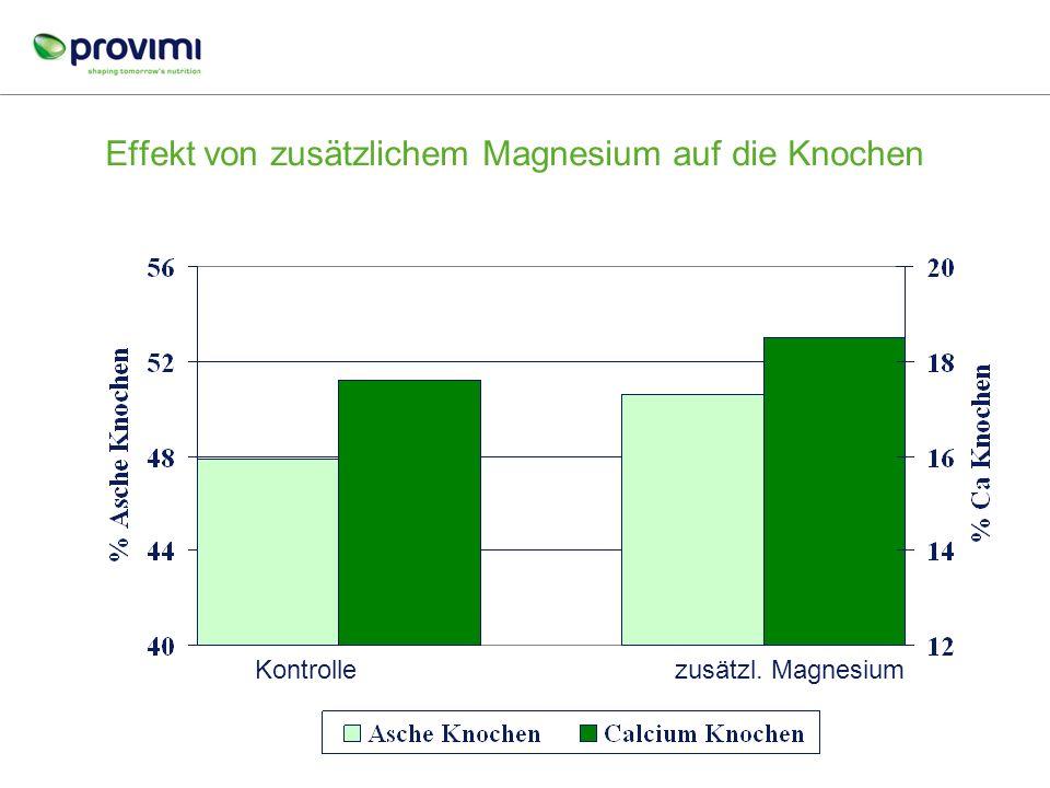 Effekt von zusätzlichem Magnesium auf die Knochen