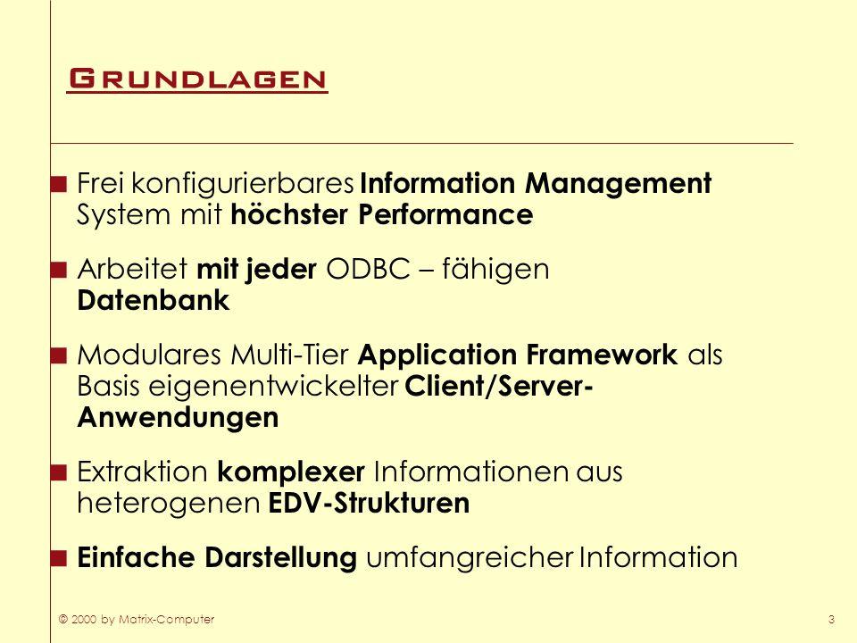 GrundlagenFrei konfigurierbares Information Management System mit höchster Performance. Arbeitet mit jeder ODBC – fähigen Datenbank.