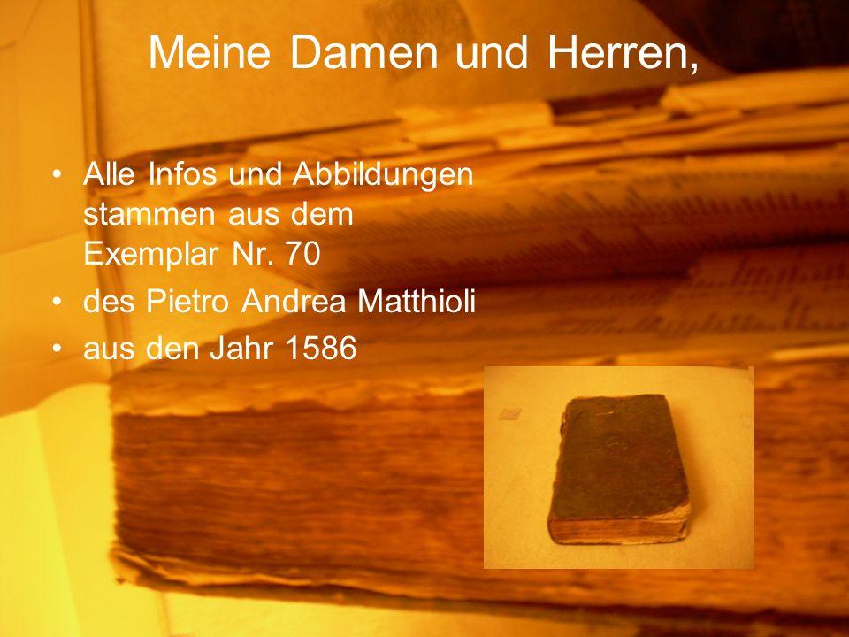 Meine Damen und Herren, Alle Infos und Abbildungen stammen aus dem Exemplar Nr. 70. des Pietro Andrea Matthioli.