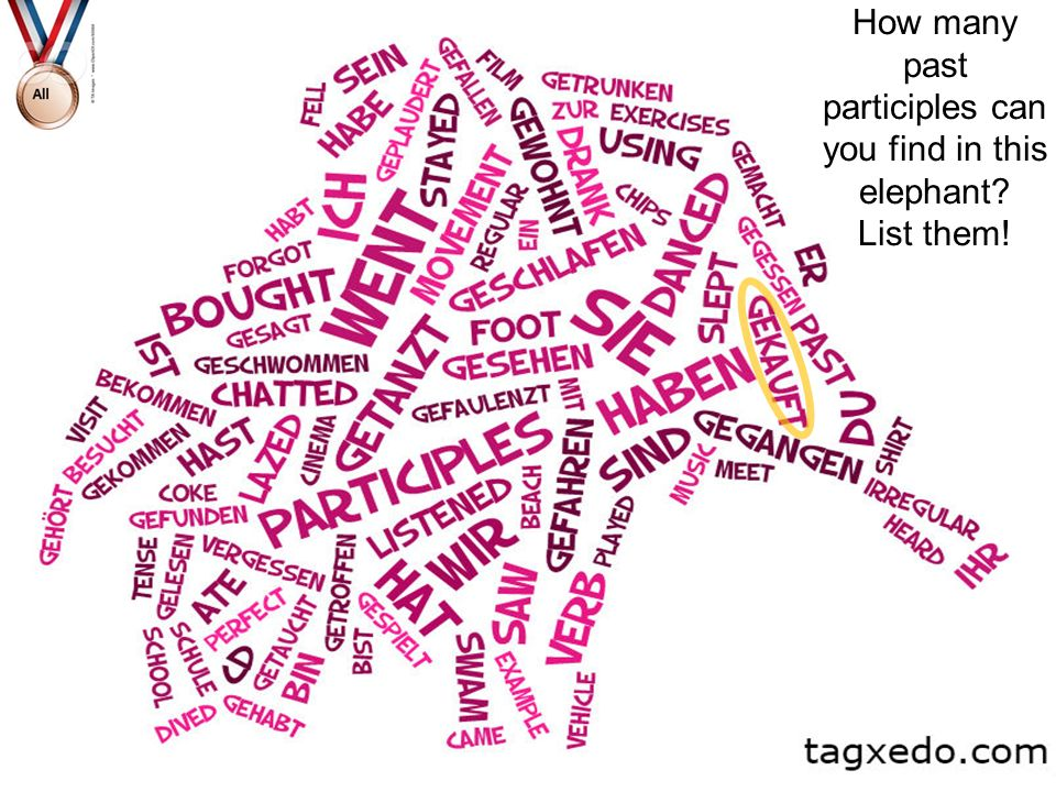 How many past participles can you find in this elephant List them!