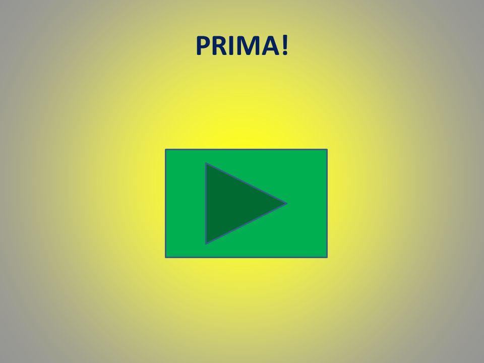 PRIMA!