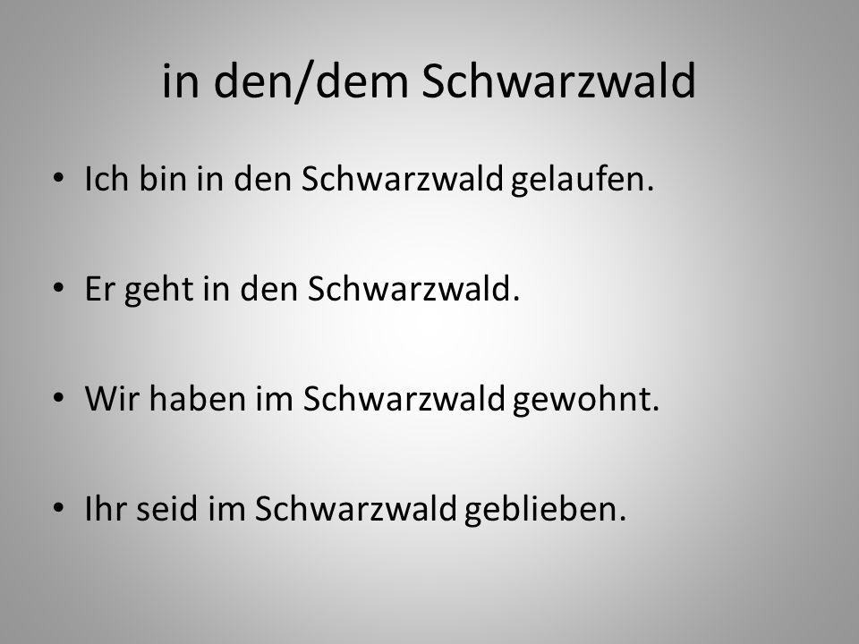 in den/dem Schwarzwald