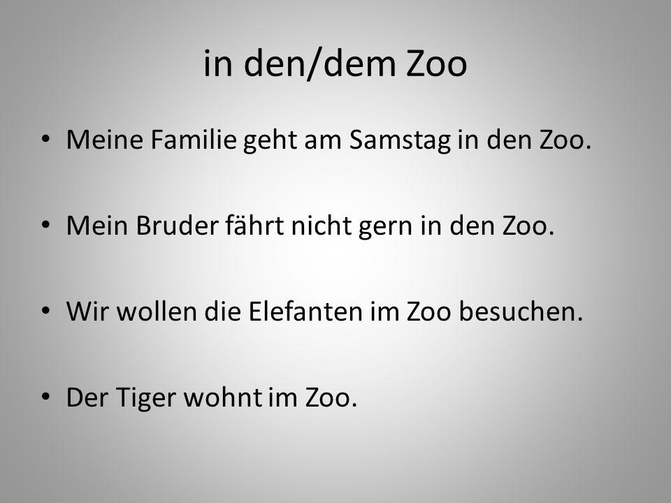in den/dem Zoo Meine Familie geht am Samstag in den Zoo.