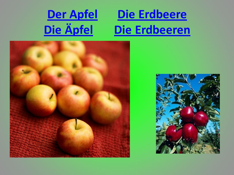 Der Apfel Die Erdbeere Die Äpfel Die Erdbeeren