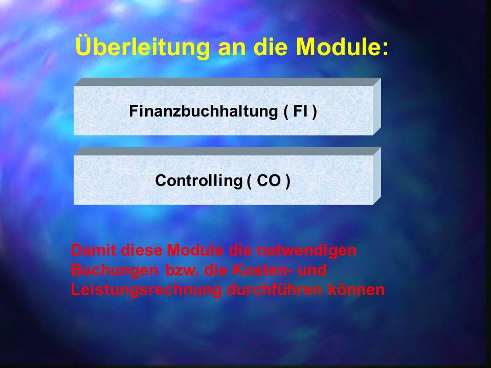 Finanzbuchhaltung ( FI )