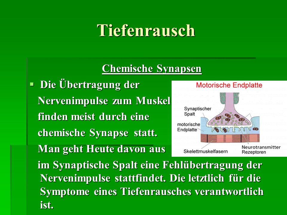 Tiefenrausch Chemische Synapsen Die Übertragung der