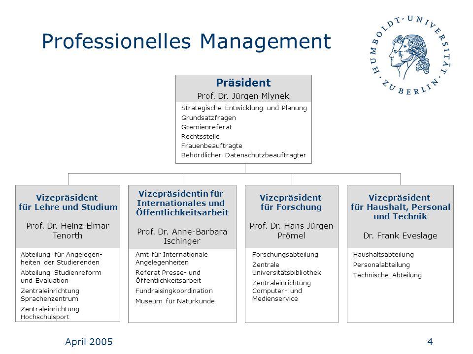 Professionelles Management