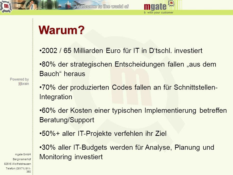 Warum 2002 / 65 Milliarden Euro für IT in D'tschl. investiert