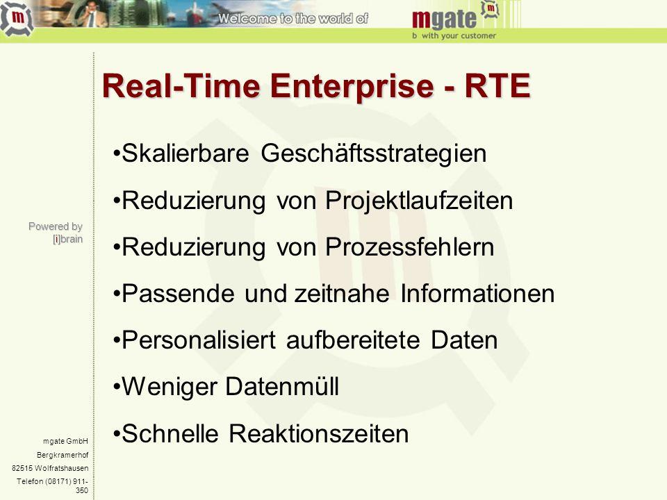Real-Time Enterprise - RTE