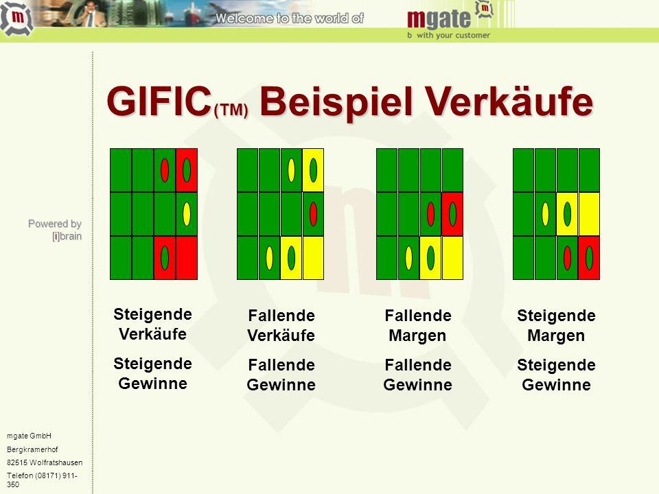 GIFIC(TM) Beispiel Verkäufe