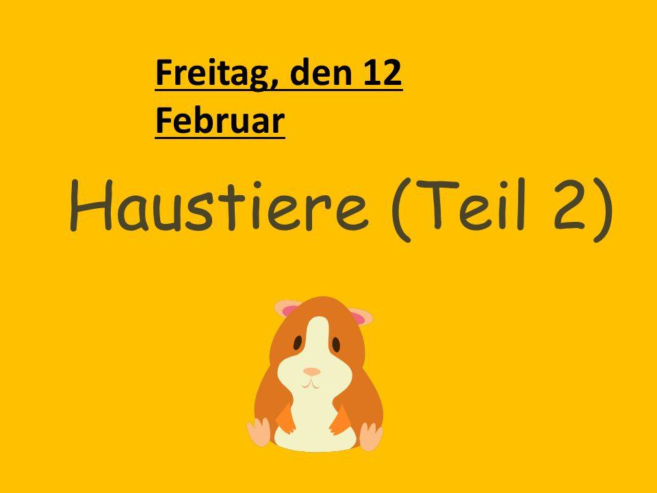 Freitag, den 12 Februar Haustiere (Teil 2)