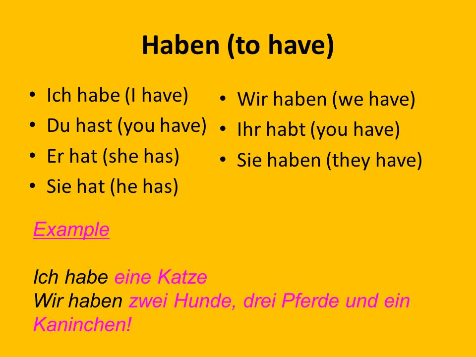 Haben (to have) Ich habe (I have) Wir haben (we have)