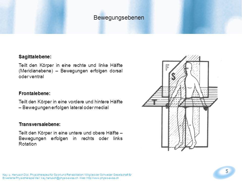 Nett Bewegungsebenen Anatomie Ideen - Anatomie Von Menschlichen ...