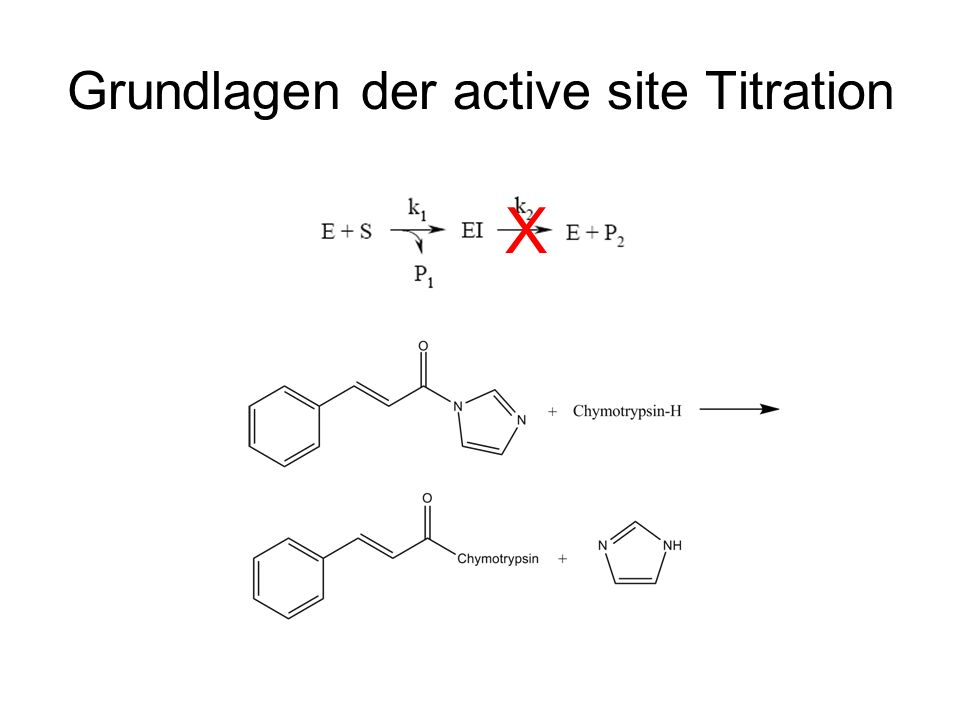 Grundlagen der active site Titration