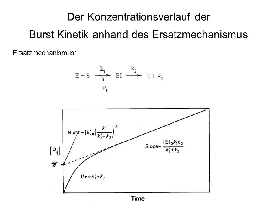 Der Konzentrationsverlauf der Burst Kinetik anhand des Ersatzmechanismus