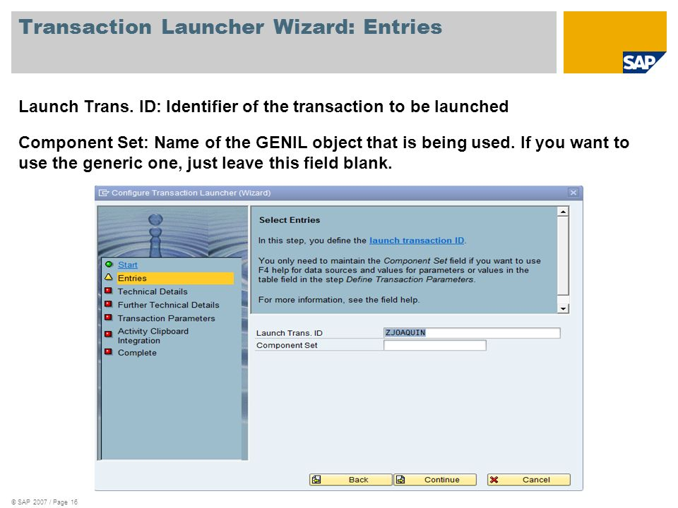 Transaction Launcher Wizard: Entries