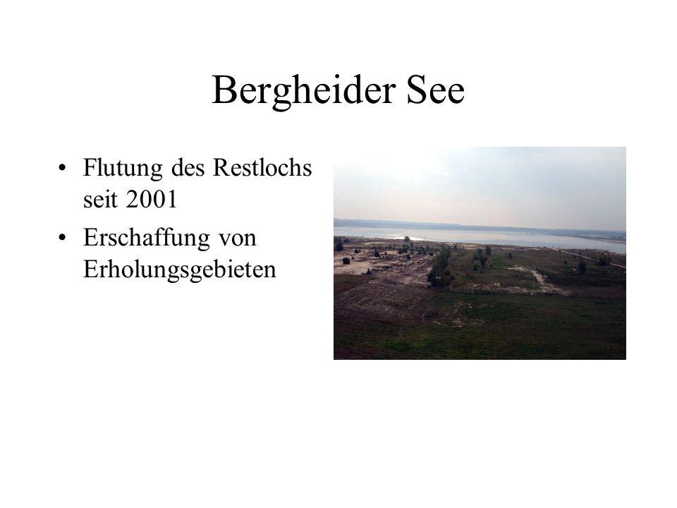 Bergheider See Flutung des Restlochs seit 2001