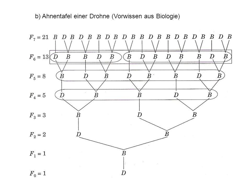 b) Ahnentafel einer Drohne (Vorwissen aus Biologie)