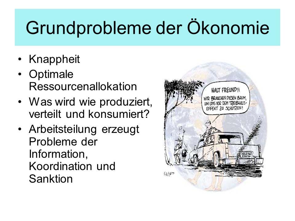 Grundprobleme der Ökonomie