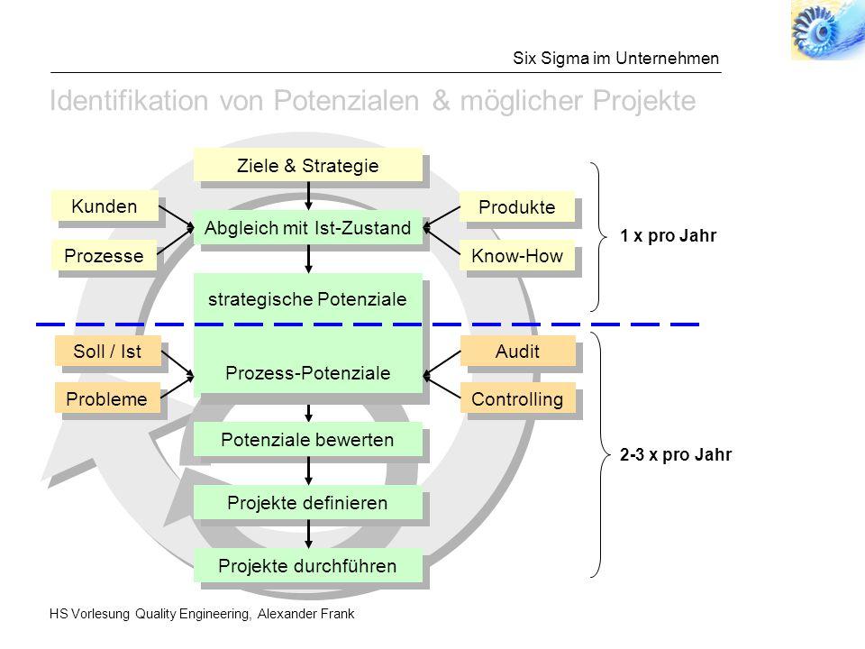 Funktionsweise von Six Sigma-Programmen