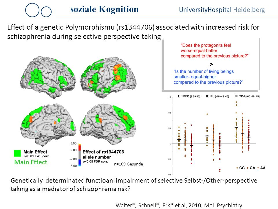 soziale Kognition Effect of a genetic Polymorphismu (rs1344706) associated with increased risk for schizophrenia during selective perspective taking.