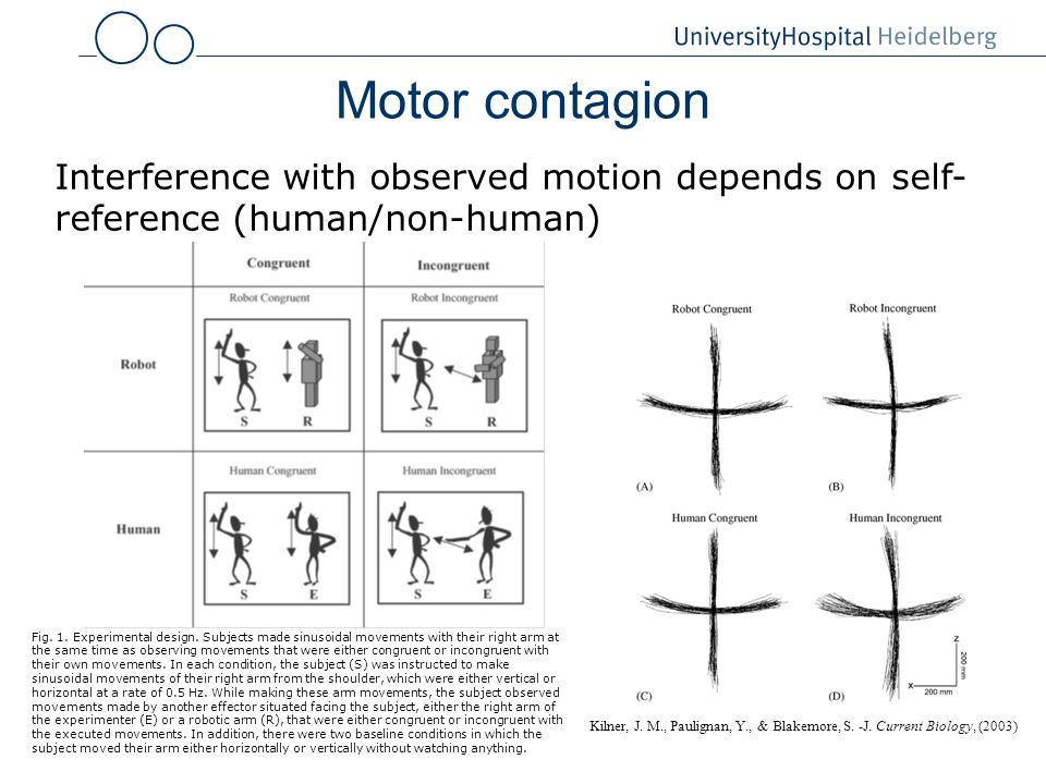 Motor contagion Interference with observed motion depends on self-reference (human/non-human)
